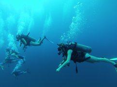 Underwater - Team Neil