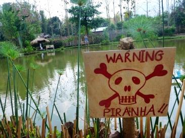 fish farm - Pai