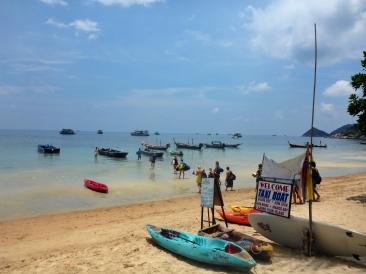 The Beach - Big Blue Dive Resort