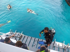 Jumping In - Dive Boat