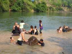 Riding Elephants - Kanchanaburi