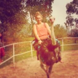 Riding an Ostrich - Chiang Rai