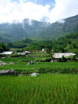 Mu's Village
