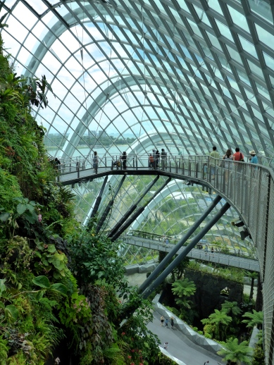 Cloud Forest - Gardens by the Bay