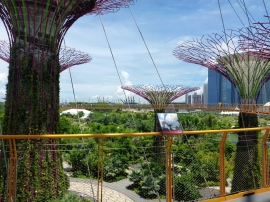 Skywalk - Gardens by the Bay