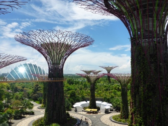 Supertree Grove - Gardens by the Bay
