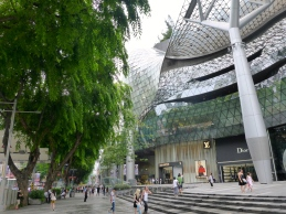 Shopping at ION Orchard