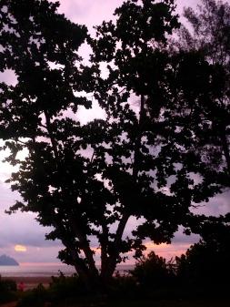 Sunset - Bako National Park