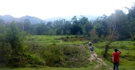 Trekking to Pa'Lungan