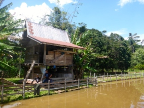 The Jungle Whisperer's Family Hut