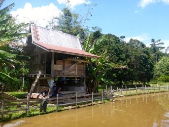 The Jungle Whisperer's Family Hut