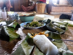 Lunch in the Family Hut. (Oh Look. More Rice).