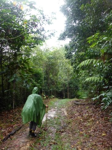 Rainy Day Trek Day 3