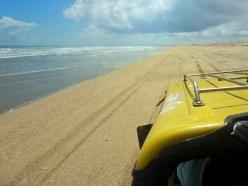 Beachside Buggy Ride