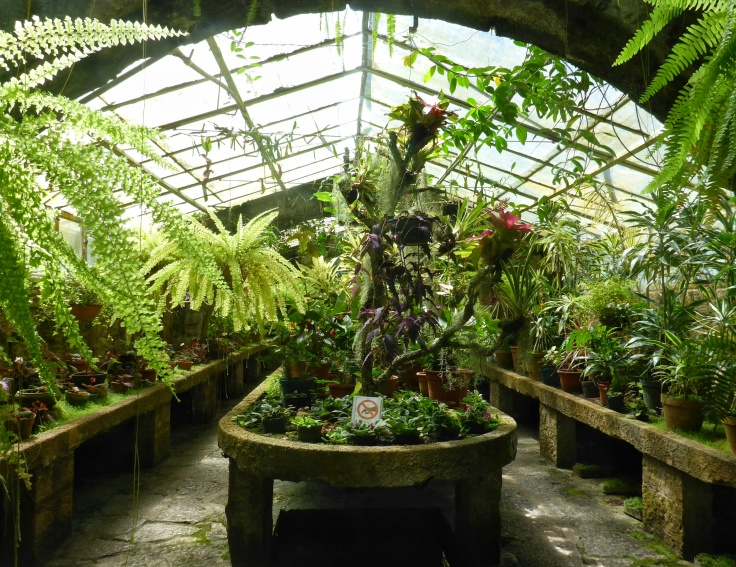 Some Greenhouse Near Punta del Diablo