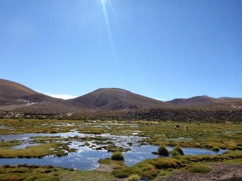 The Road to San Pedro.