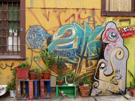 Plants. Graffiti.
